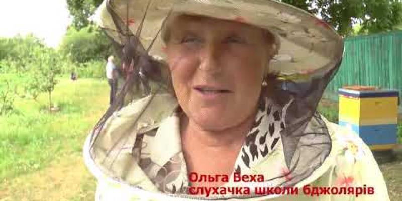 Вбудована мініатюра для На Сумщині у садибі третього президента України навчають безробітних бджолярській справі